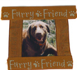 will never forget my brown furry friend, I always told her,