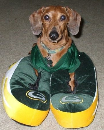 Rooting for Packers team